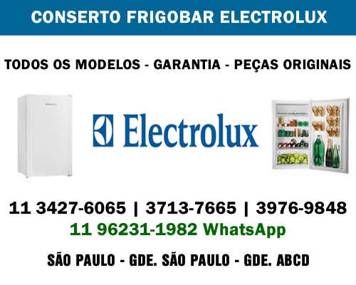 Conserto frigobar Electrolux